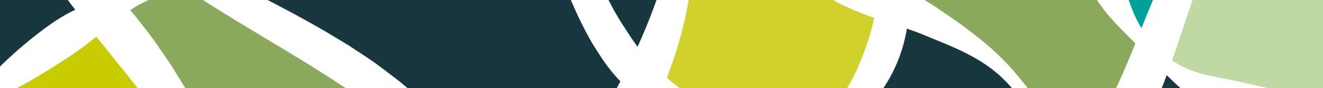 franja-logo